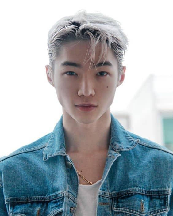 Korean grey hairstyles